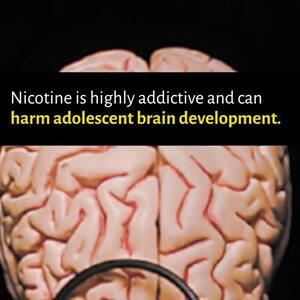 Addictive Brain Social Media Video: details >>